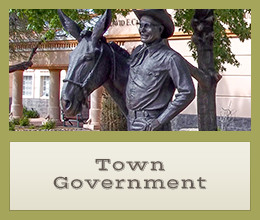 Town Government